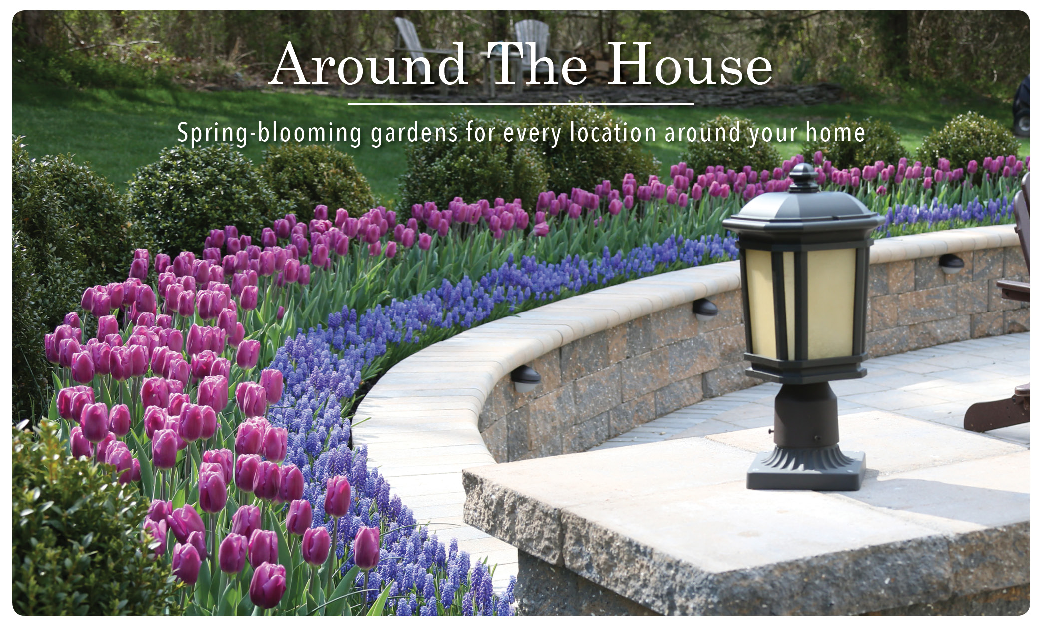 Spring_Flower_Bulb_Inspiration