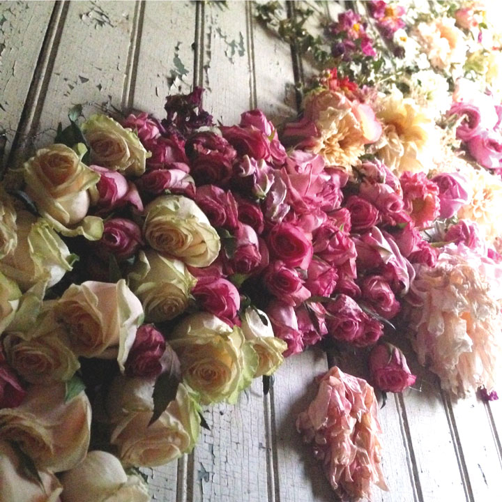 rose-walll-1.jpg