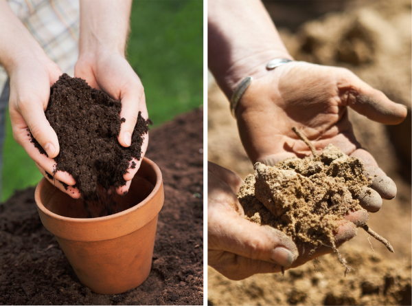 Garden tip good soil for beautiful gardens longfield for Topsoil vs potting soil