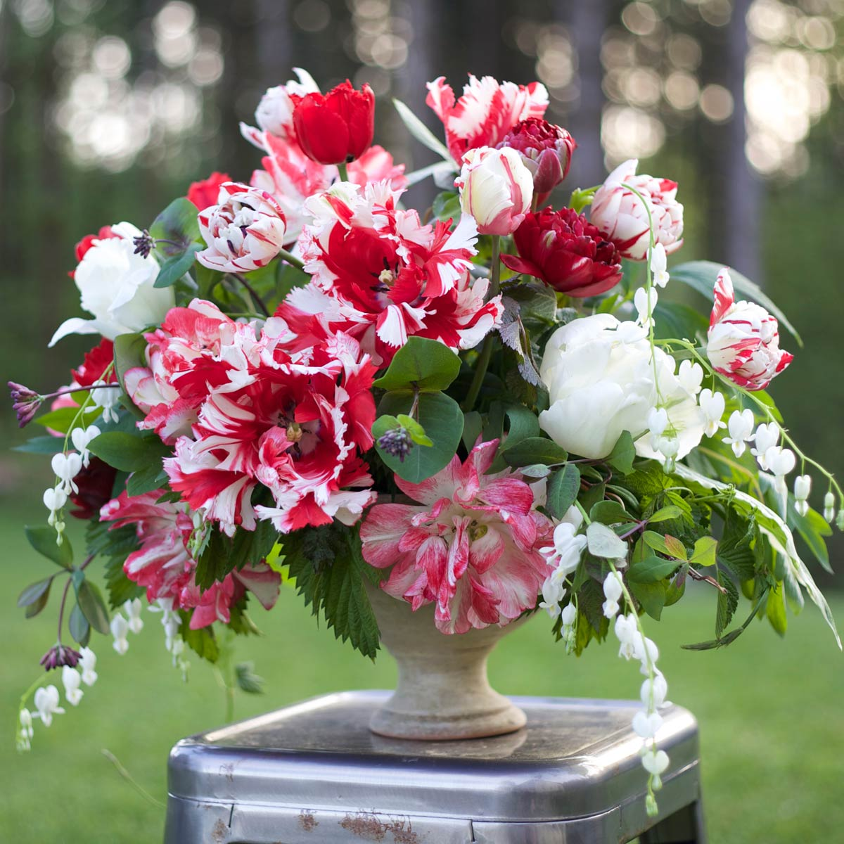 Flirty-Fleurs---Longfield-Tulips-10.jpg