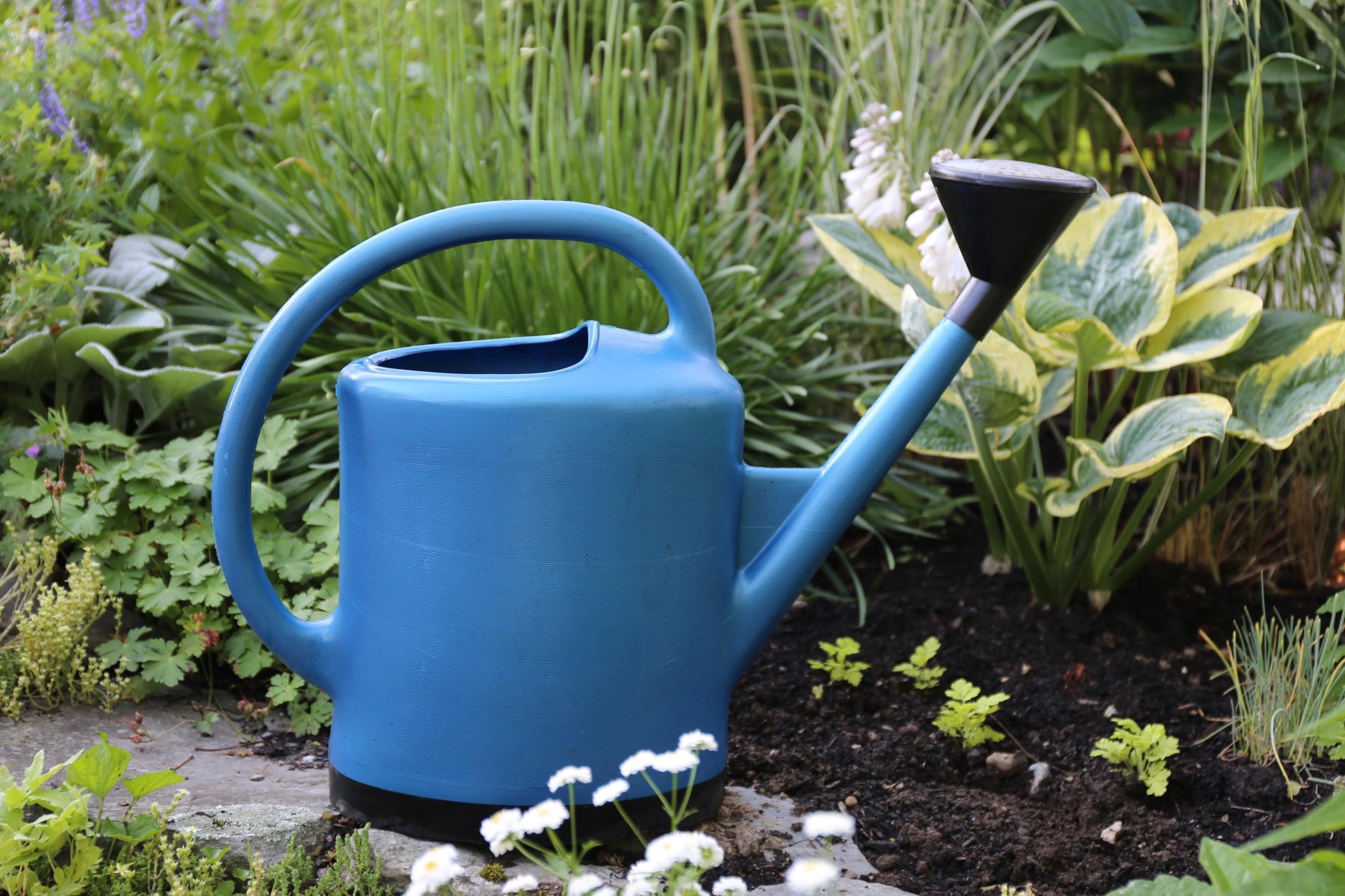 spring garden checklist - Longfield Gardens