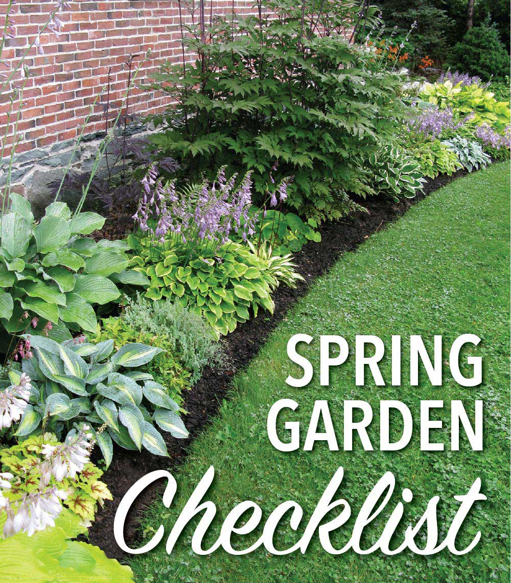 Spring garden checklist for a low maintenance flower for Garden maintenance checklist