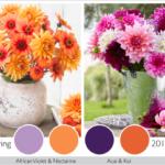 Color Trends in the Garden: 2013