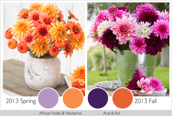 Color Trends in the Garden 2013 - Longfield Gardens