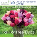 Win $100 In Bulbs!