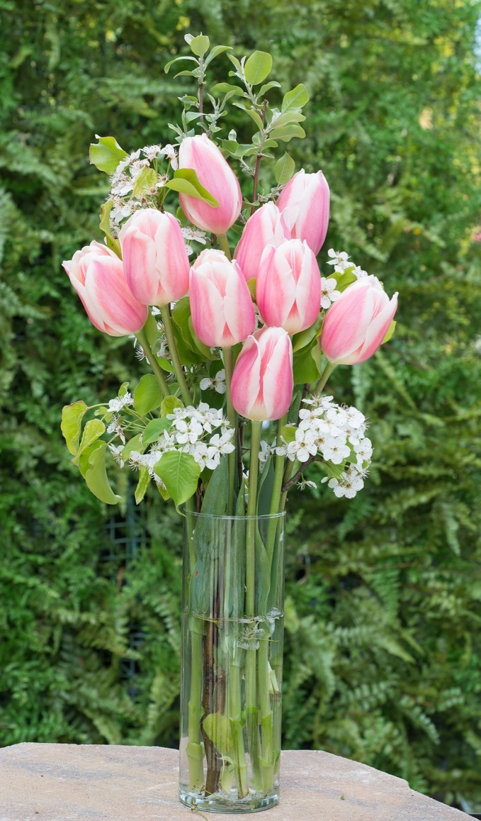 5 Tips For Long Lasting Flower Bouquets Longfield Gardens