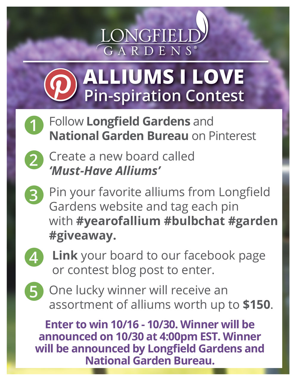 Alliums Pinterest Contest
