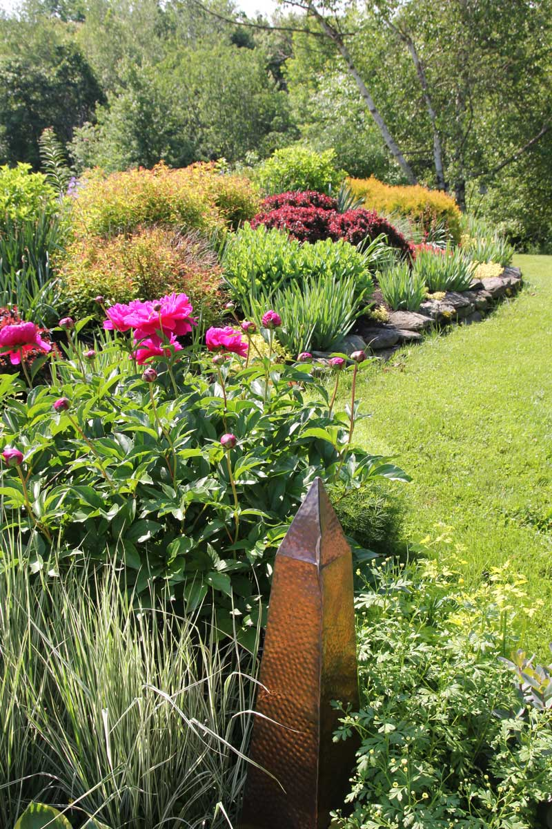 shrubs-in-perennial-border.jpg