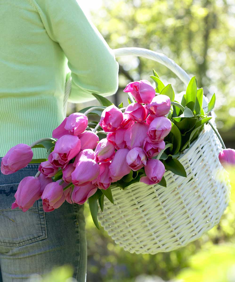 pink-tulips-in-harvest-basket.jpg