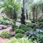 7 Design Tips for Shady Gardens