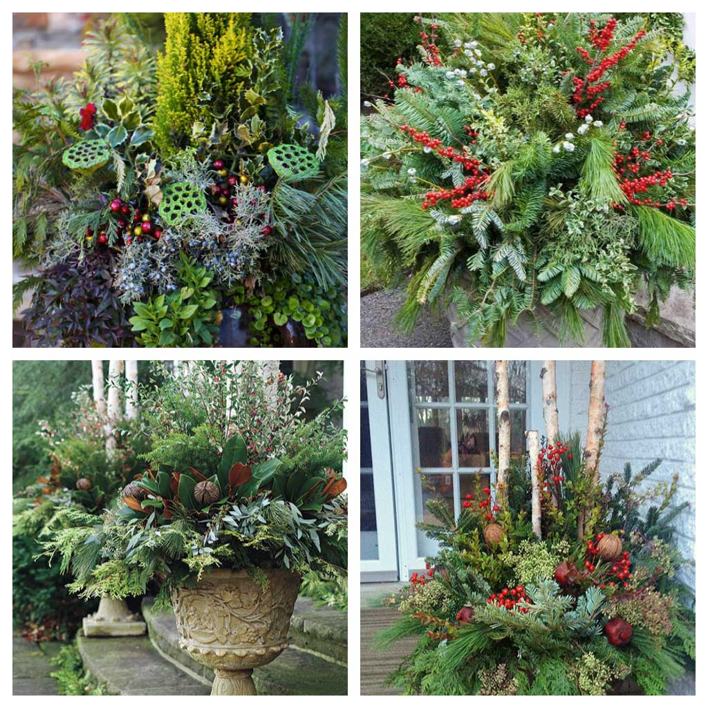 Decorate Your Entryway for the Holidays - Longfield Gardens