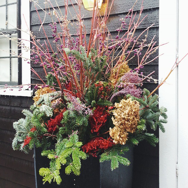 Decorate Your Entryway for the Holidays - Longfield Gardens.jpg