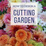 How to Design a Backyard Cutting Garden