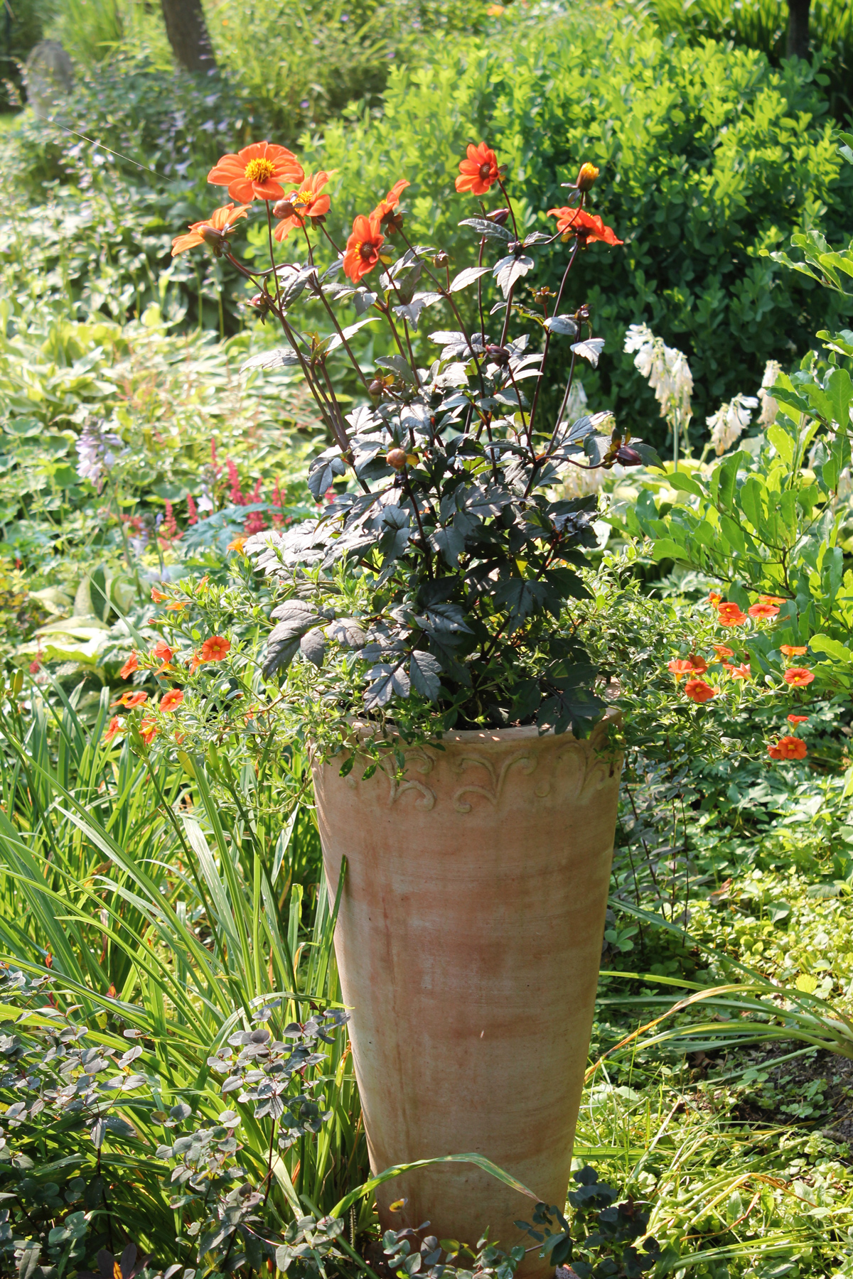 How and Why to Use Flower Fertilizer - Longfield Gardens