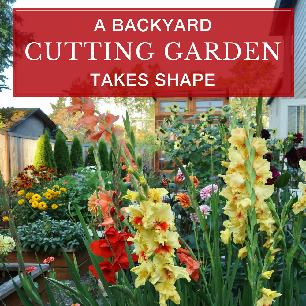 A Backyard Cutting Garden Takes Shape - Longfield Gardens