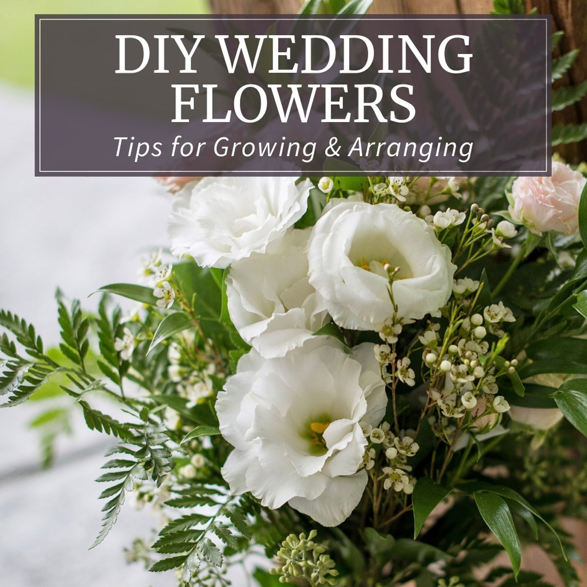 Diy Wedding Flowers Tips For Growing And Arranging