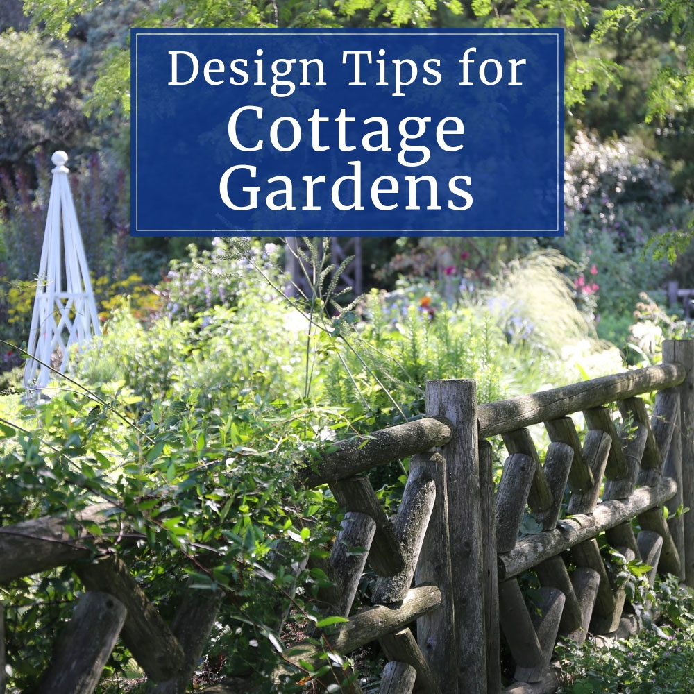 Design Tips for Cottage Gardens - Longfield Gardens