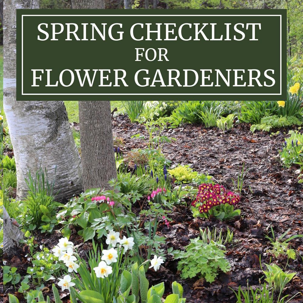 Spring Checklist for Flower Gardeners - Longfield Gardens