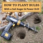 Planting Flower Bulbs With a Soil Auger and Power Drill