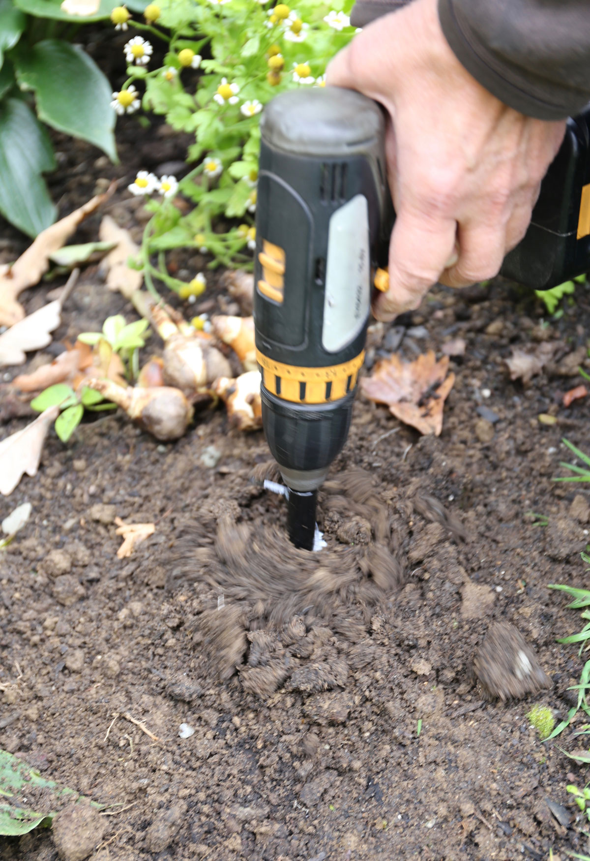 Planting Flower Bulbs with a Soil Auger and Power Drill - Longfield Gardens