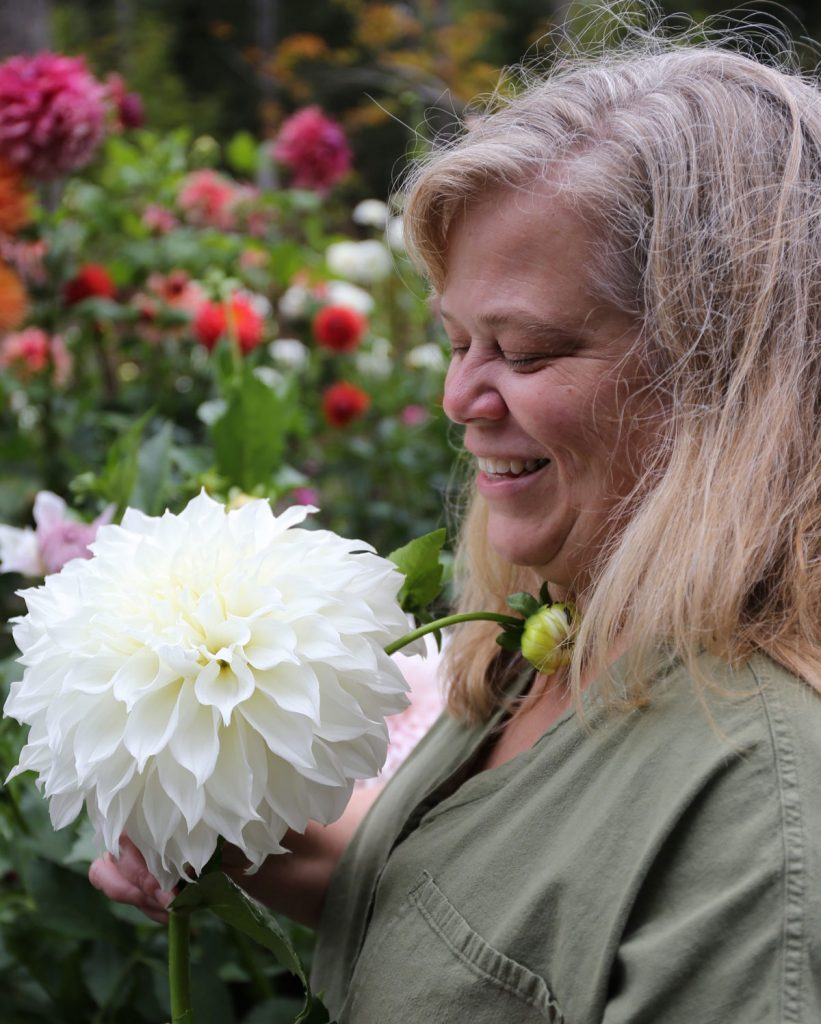 New Dahlia Collections from Flirty Fleurs - Longfield Gardens