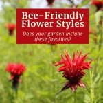 Bee-Friendly Flower Styles: Does Your Garden Include These Favorites?