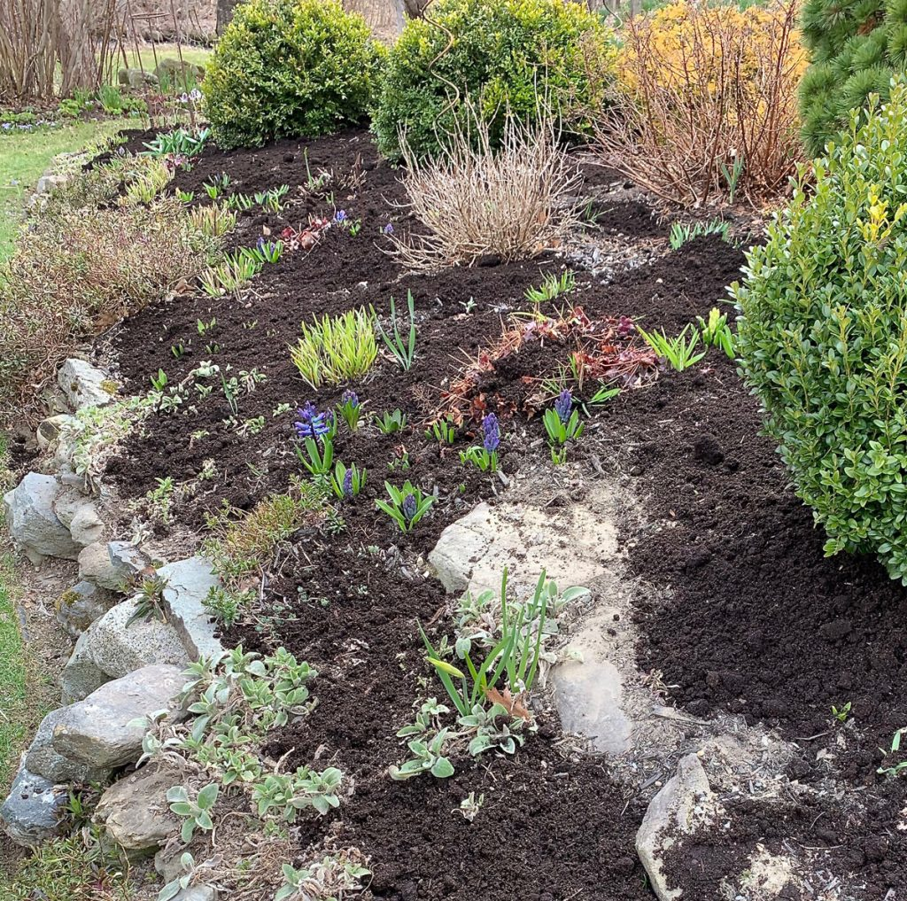 How To Choose The Best Mulch For Flower Gardens Longfield Gardens