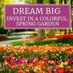 Dream Big: Invest in a Colorful Spring Garden