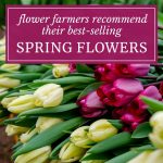 Flower Farmers Recommend Their Best-Selling Spring Flowers